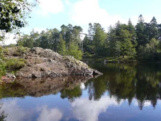 Clear reflections Tarn Hows