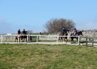 Middleham Gallops