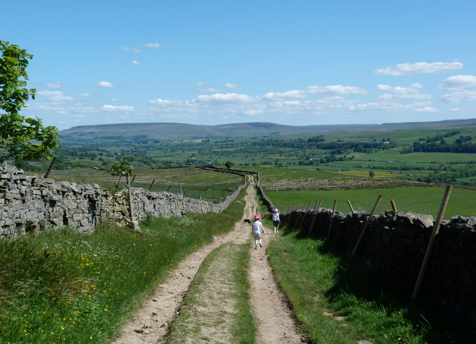 East down Wensleydale