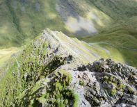 On Sharp Edge