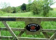 Rachel's Wood, Hoff