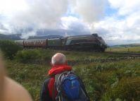 Steam near Ribblehead