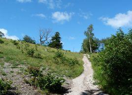 Limestone slopes