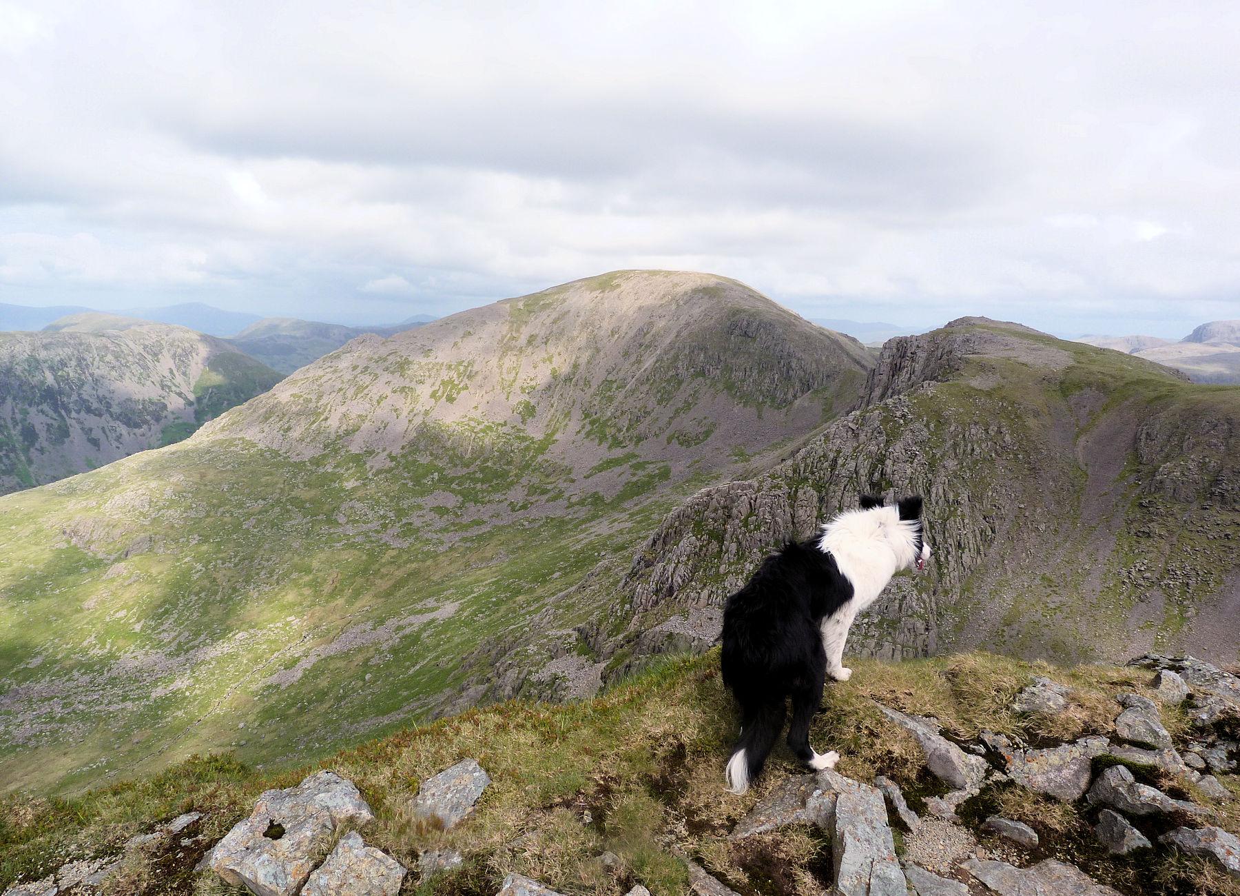 Steeple summit