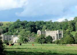 Evening Rievaulx Abbey