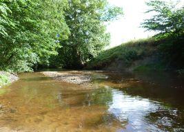 River Rye near Rievaulx