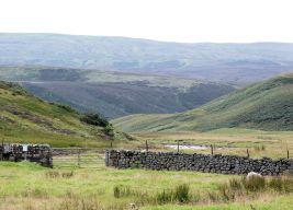 Widdy Bank Farm