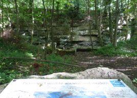Pickering woods