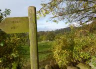 Osmotherley meets Cleveland Way