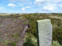 Moors over Rosedale