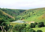 Reservoir at Long Gill