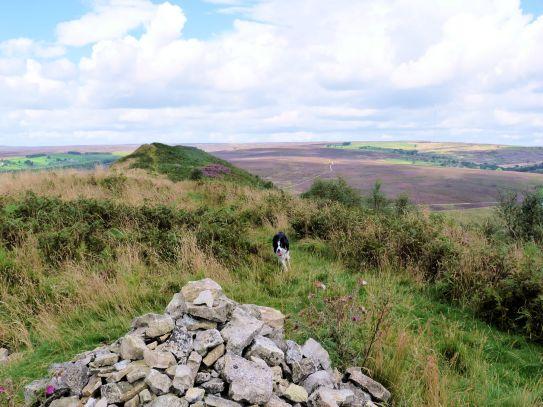 Summit of Hawnby Hill