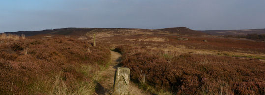 Typical Moorland Walking