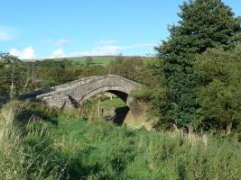 Duck Bridge Danby
