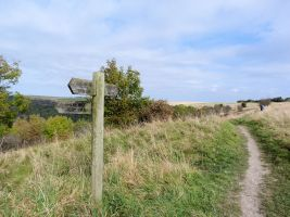 The Cleveland Way nr Sutton Bank