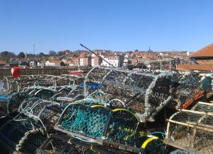 Whitby crab baskets