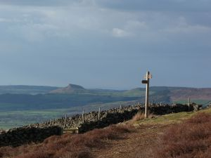 Carr Ridge & Roseberry Topping