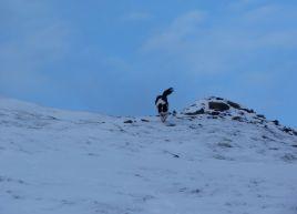 Snowy Skiddaw