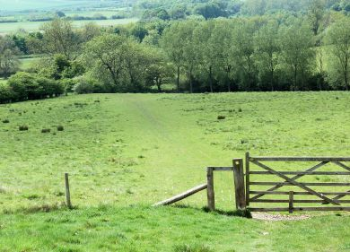 Near North Grimston