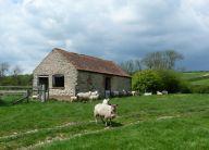 Settrington House barn