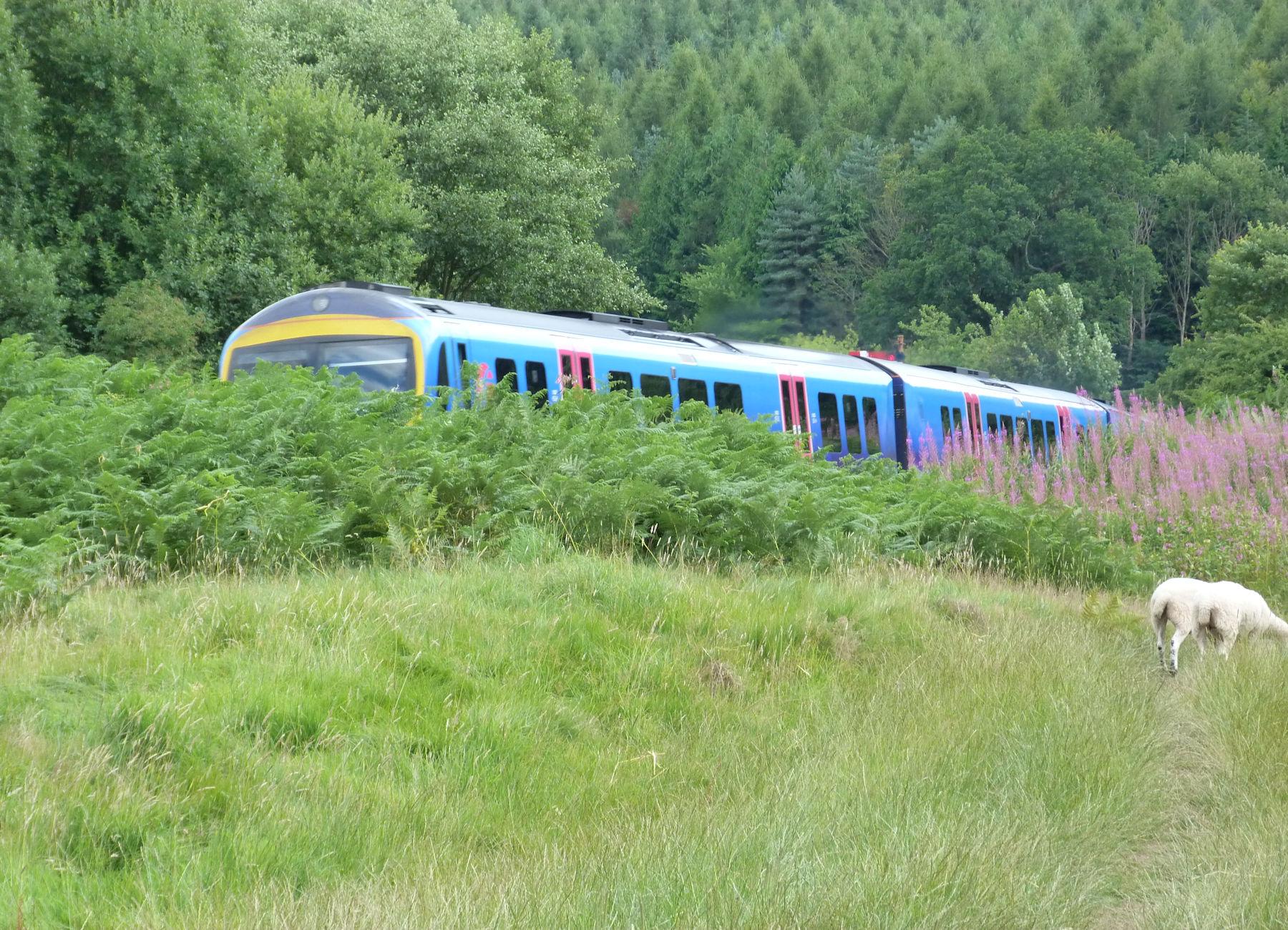 Train near Kirkham