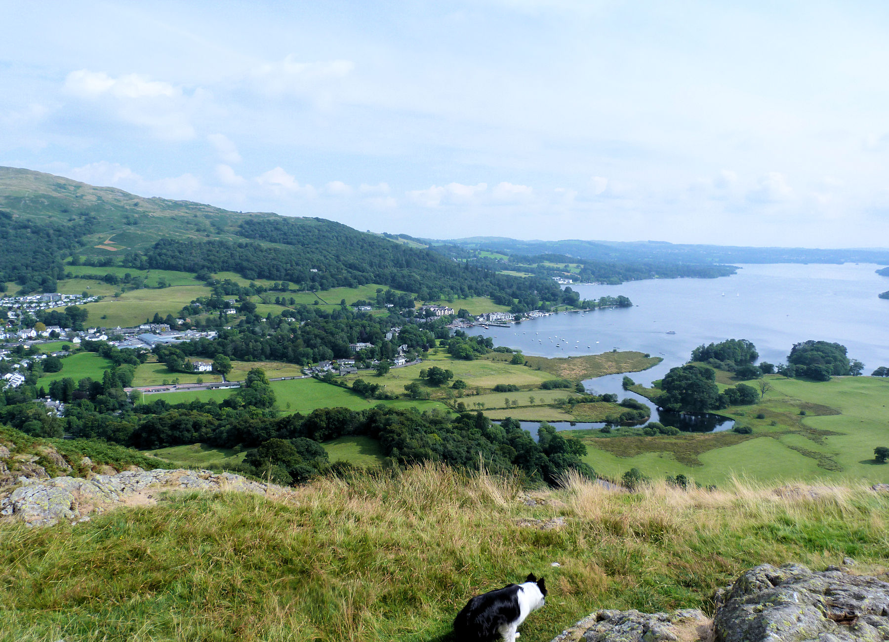 Windermere from Lily Tarn