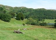 Near Loughrigg Tarn