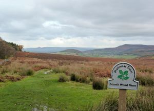 Scarth Wood Moor