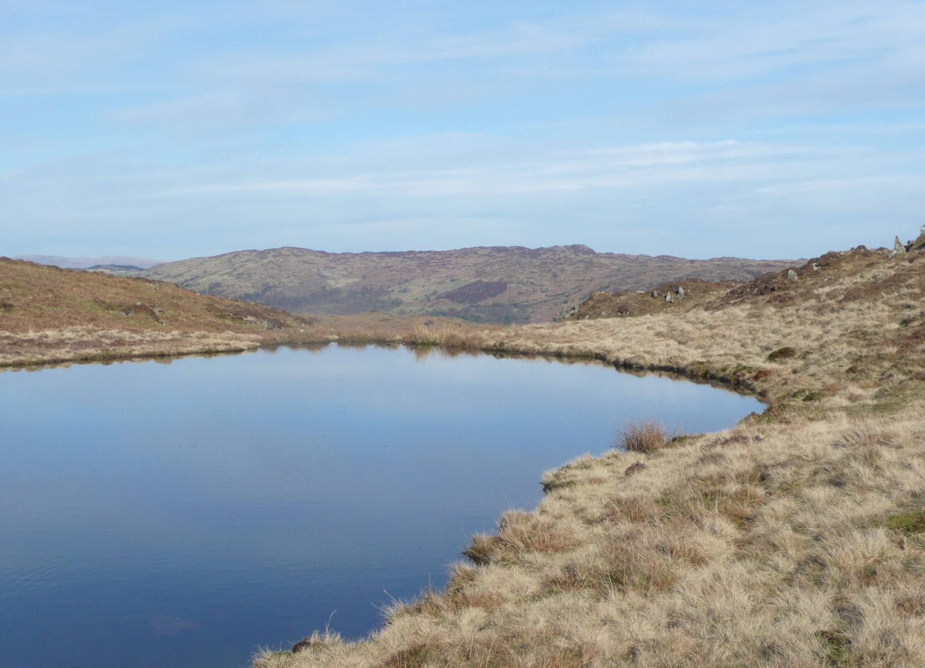 Woodland Fell hidden tarn