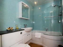 Bartys bathroom
