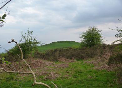 Bell Hill