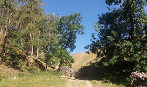 Near Ingleborough Cave