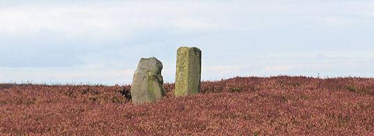 Faber Stones on Osmotherley Moor