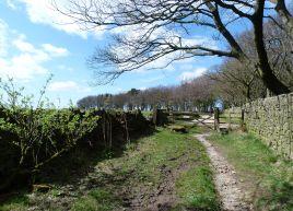 Tewitt farm