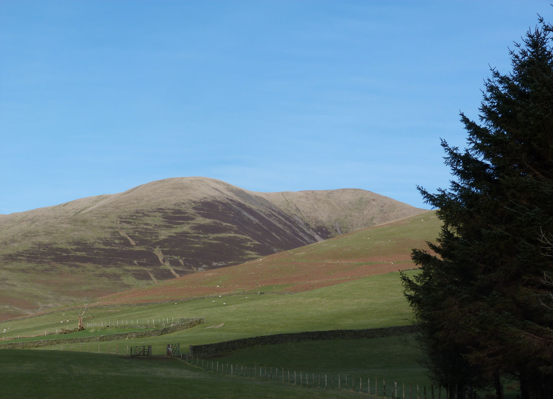 Fell Head from Howgill