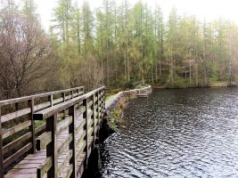 Finsthwaite High Dam