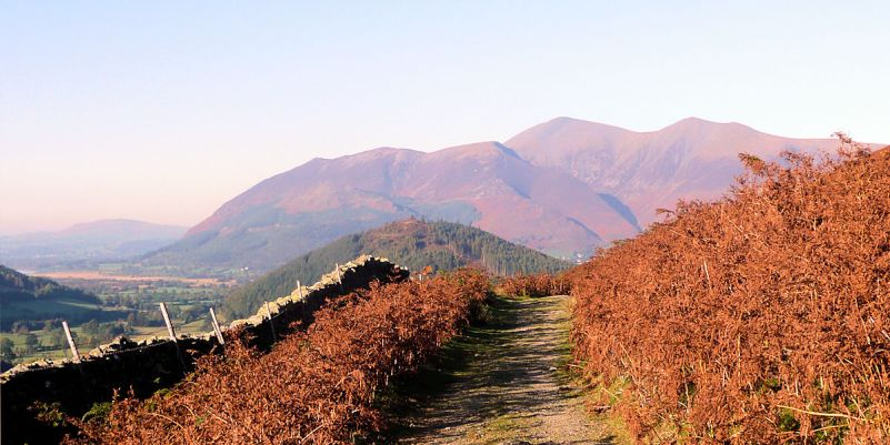 Catbells on the Newlands side