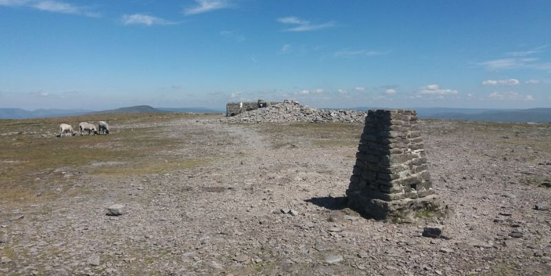 Summit area of Ingleborough