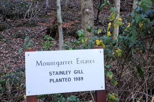 Mountgarret Estates