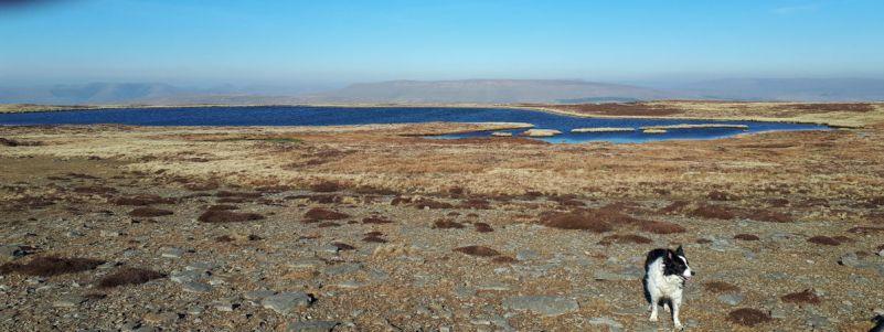 Exploring the 3 Tarns of Whernside