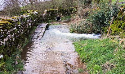 Flooded bridleway near Feizor
