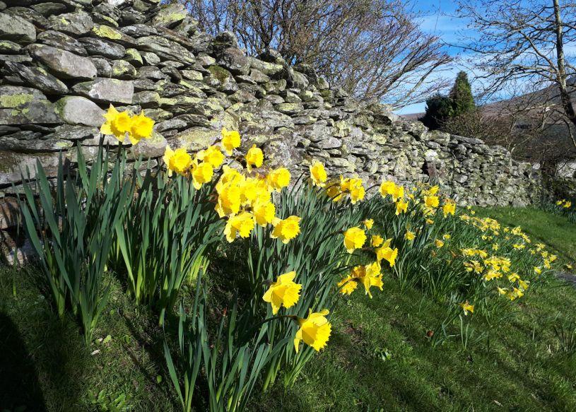 Threlkeld in Spring