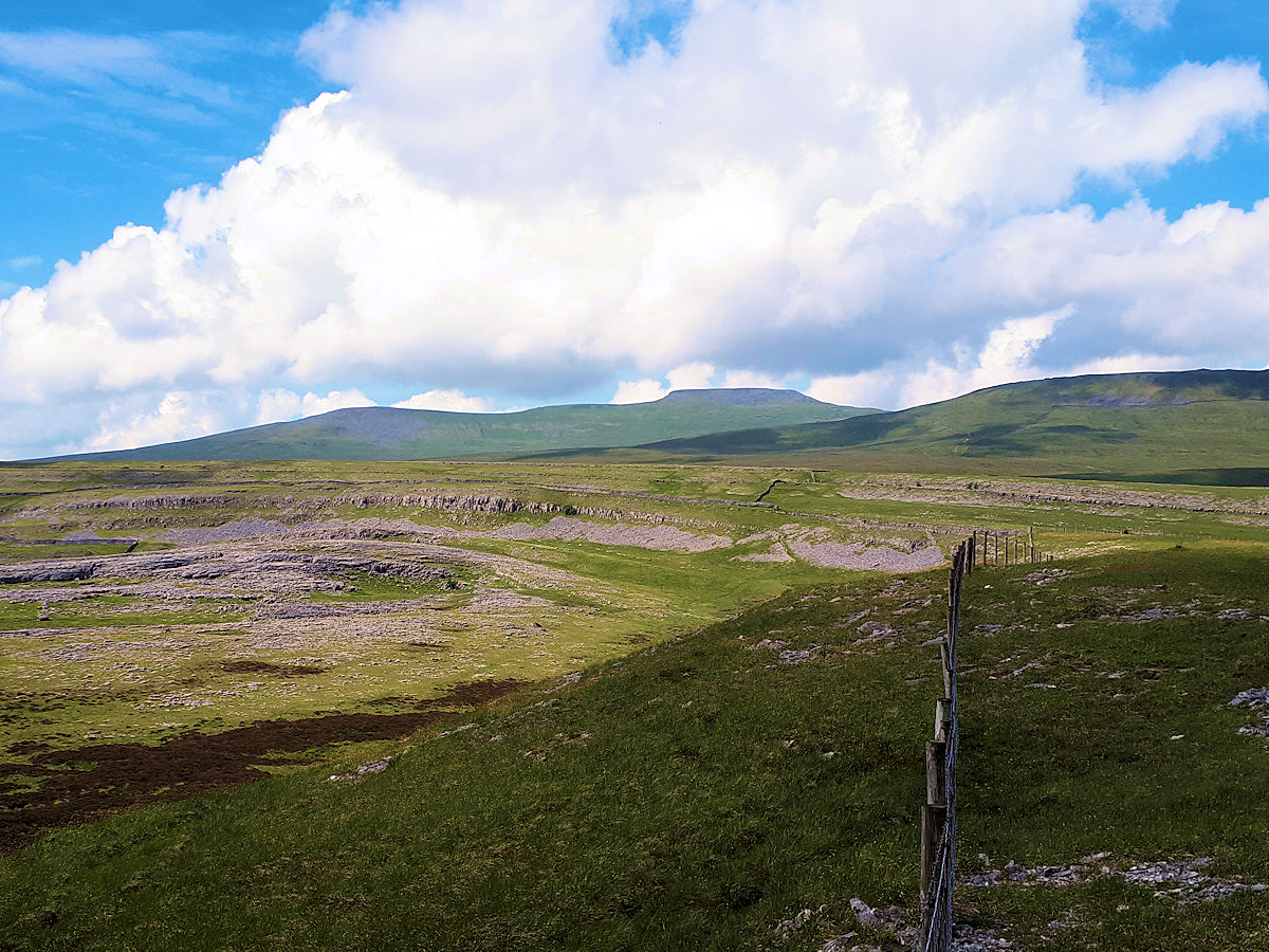 Ingleborough from the Reserve