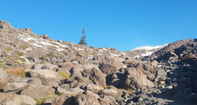 Ptarmigan ridge boulder field
