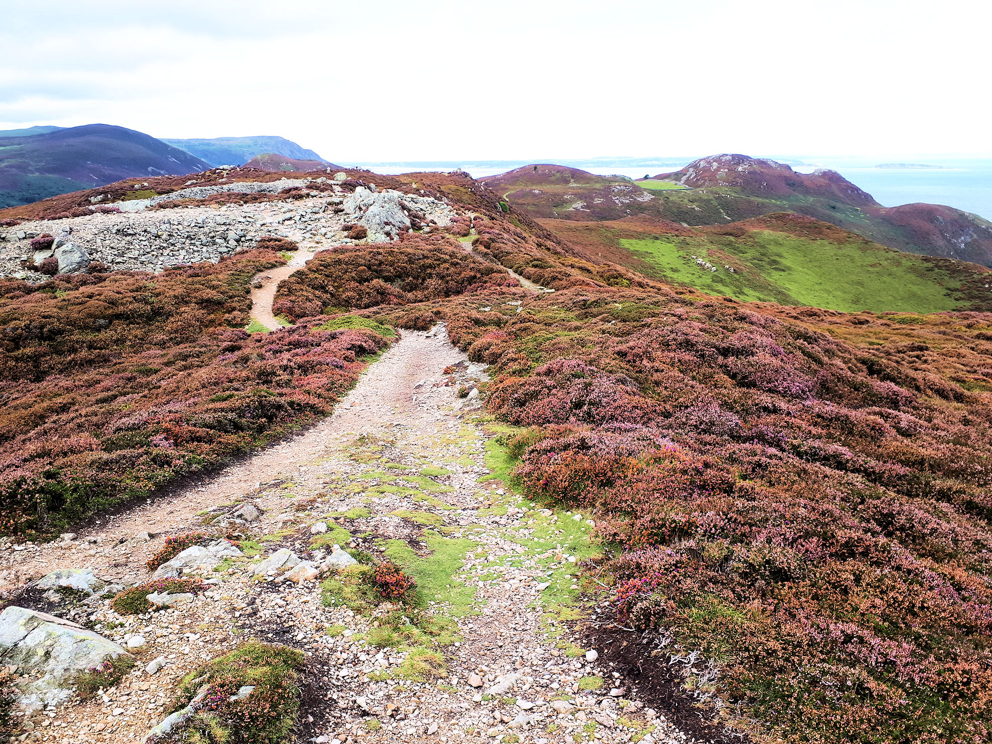 Summit of Conwy Mountain