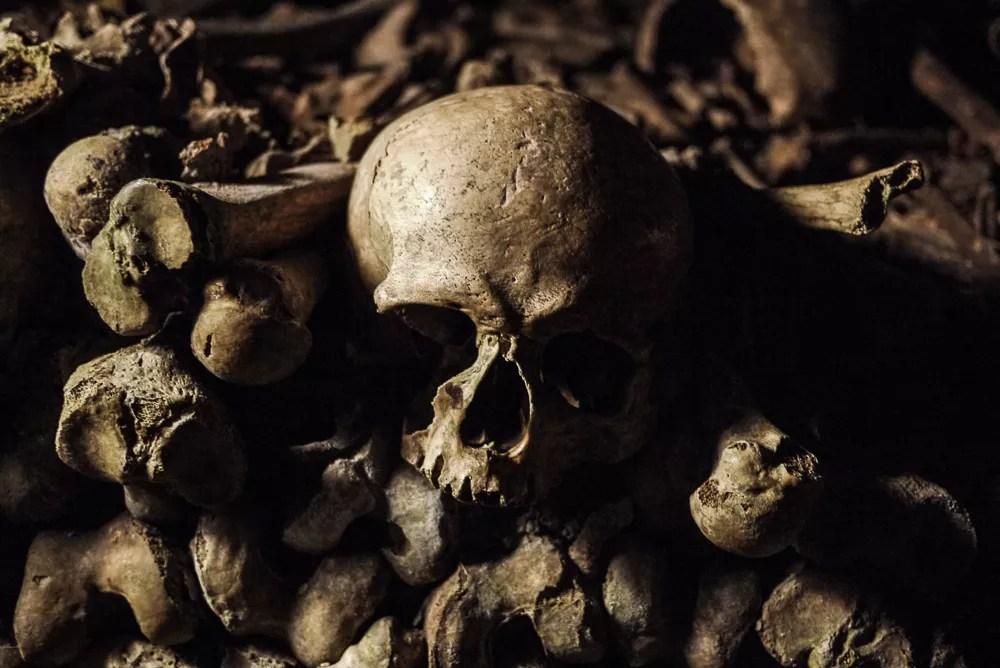 Skull in Paris Catacombes