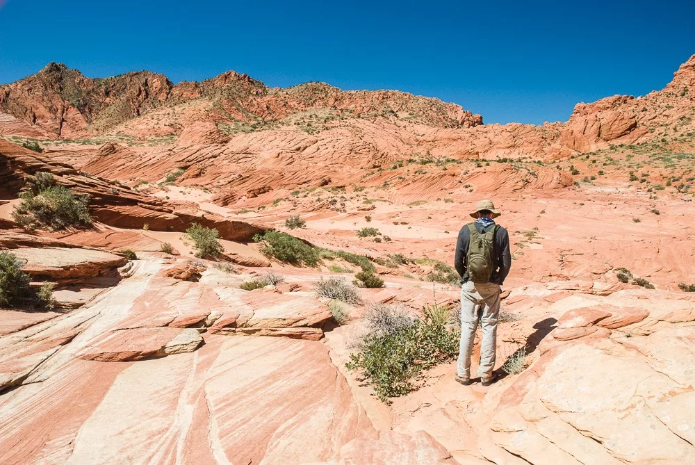 Walking In Footsteps of Dinosaurs at the Wave