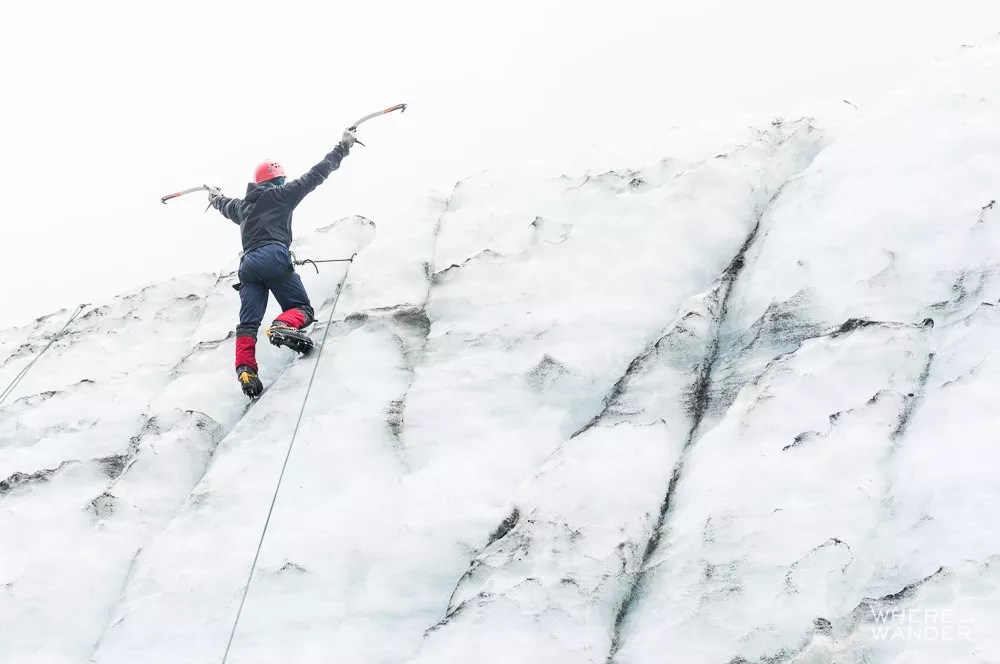 Fox-Glacier-Where-Ice-Climbing-New-Zealand-Must-Do-28