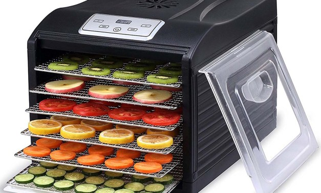 10 Things to Look for When Choosing a Food Dehydrator