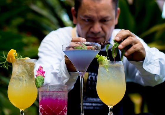 Garden-To-Glass Botanical Cocktails Now Available At Casa Velas in Puerto Vallarta